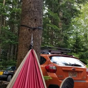 Hammock in British Columbia
